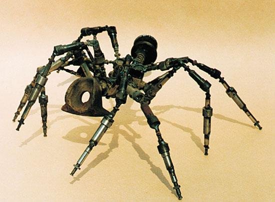 norian paicu - SPIDER