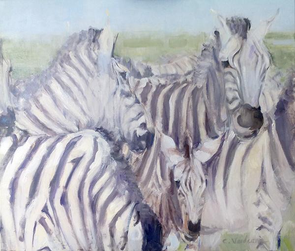 Zebre - carmen vaideanu