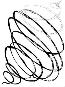 corina cadariu florea Forma raspunsului